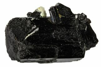"Buy 1.5"" Black Tourmaline (Schorl) Crystal Cluster - Namibia - #117511"