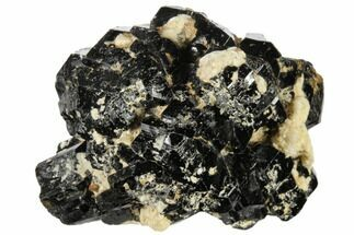 Tourmaline var. Schorl & Orthoclase - Fossils For Sale - #117519