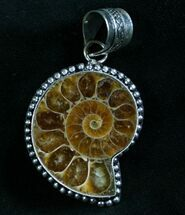 Fossil Ammonite Pendant - 110 Million Years Old For Sale, #8285