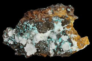 "3.2"" Chrysocolla, Rosasite and Calcite Association - Utah For Sale, #119534"