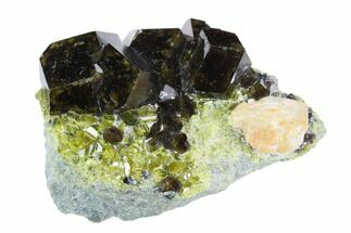 "1.25"" Andradite Garnet, Diopside & Calcite Association - Afghanistan For Sale, #121358"