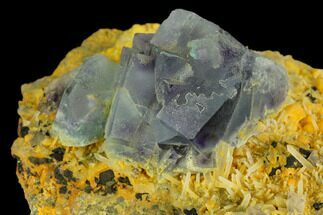 "2.6"" Purple-Green, Cubic Fluorite Crystal Cluster For Sale, #122030"