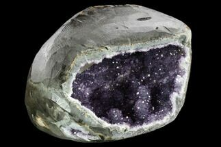 "10.2"" Wide, Dark Purple Amethyst Geode - Uruguay For Sale, #124106"