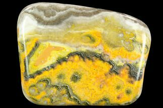 "4.1"" Polished Bumblebee Jasper Section - Indonesia For Sale, #124370"