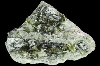 Epidote & Biotite - Fossils For Sale - #122667