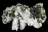 "2"" Chalcopyrite, Pyrite, Sphalerite and Quartz Association - Peru - #126573-1"