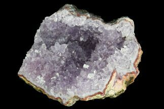 "2.8"" Amethyst Crystal Geode Section - Morocco For Sale, #127976"