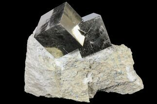 Two Large, Gorgeous Pyrite Cubes in Matrix - Navajun, Spain For Sale, #129107