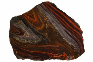 "Buy 5.5"" Polished Tiger Iron Stromatolite - 3.02 Billion Years - #129286"
