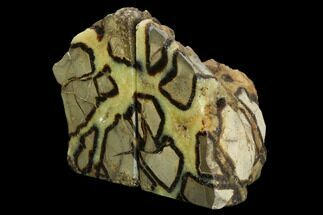 Septarian - Fossils For Sale - #129927