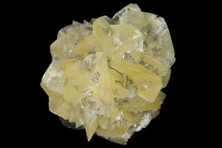 "Buy 2.25"" Twinned Selenite Crystals (Fluorescent) - Red River Floodway - #130288"