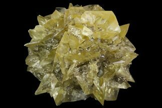 "2.45"" Twinned Selenite Crystals (Fluorescent) - Red River Floodway For Sale, #130301"