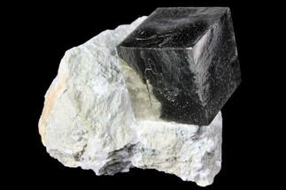 ".99"" Shiny, Natural Pyrite Cube In Rock - Navajun, Spain For Sale, #131111"
