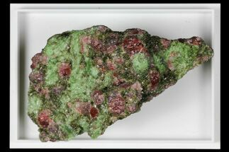 "2.1"" Pyrope, Forsterite, Diopside & Omphacite Association - Norway For Sale, #131519"