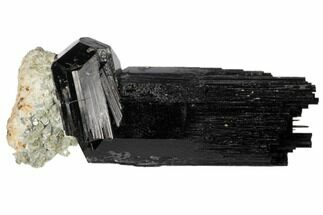 "2.1"" Black Tourmaline (Schorl) Crystals with Orthoclase - Namibia For Sale, #132185"