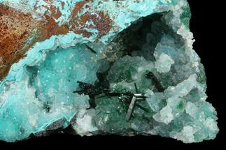 "Buy 3"" Quartz, Atacamite & Chrysocolla Association - Peru - #132364"