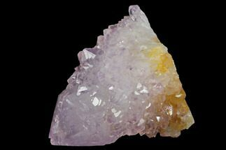 ".9"" Cactus Quartz (Amethyst) Crystal - South Africa For Sale, #132461"