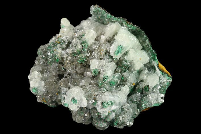 "2.8"" Malachite and Calcite Association - Zacatecas, Mexico"