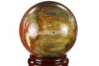 "4.25"" Colorful Petrified Wood Sphere - Madagascar For Sale, #133832"