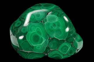 "2.4"" Polished Malachite Specimen - Congo For Sale, #133733"