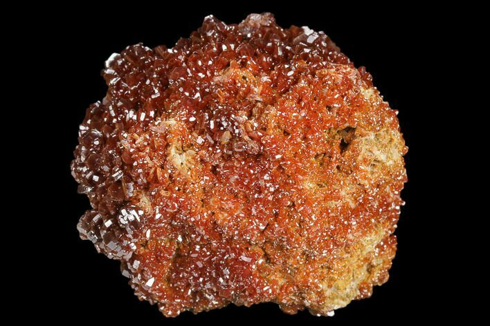 "1.6"" Ruby Red Vanadinite Crystals on Barite - Morocco"