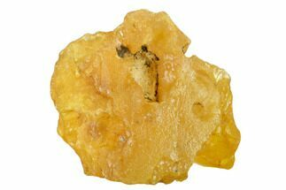 "3.6"" Rough Colombian Copal (Young Amber) For Sale, #135236"