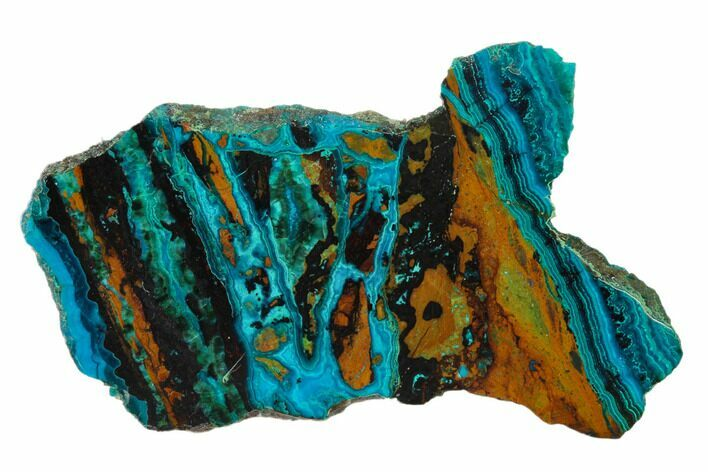 "2.55"" Polished Chrysocolla & Plume Malachite - Bagdad Mine, Arizona"