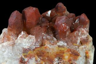 Quartz with Iron Oxide - Fossils For Sale - #135699