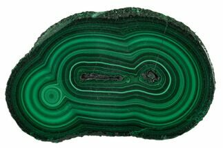Malachite - Fossils For Sale - #137052