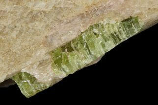 Fluorapatite & Calcite - Fossils For Sale - #137106