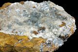 "12.7"" Blue Bladed Barite Crystal Clusters on Calcite   - Morocco - #137009-2"
