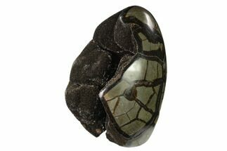"7.6"" Polished Septarian Geode - Madagascar For Sale, #137939"