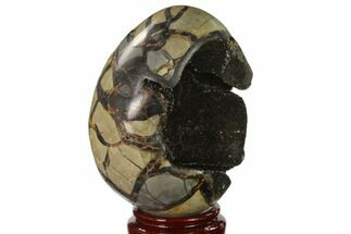 "6.5"" Septarian ""Dragon Egg"" Geode - Black Crystals For Sale, #137945"