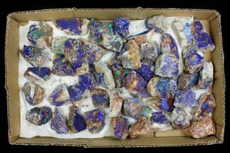 Azurite & Malachite - Fossils For Sale - #137916