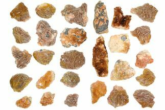 Wholesale Lot - Pink and Orange Bladed Barite - 27 Pieces - Morocco For Sale, #138053