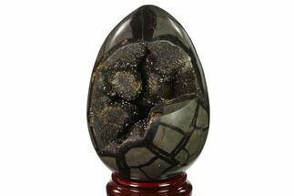"Buy 6.2"" Septarian ""Dragon Egg"" Geode - Black Crystals - #137911"