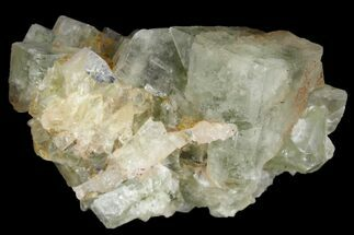 Fluorite - Fossils For Sale - #138237