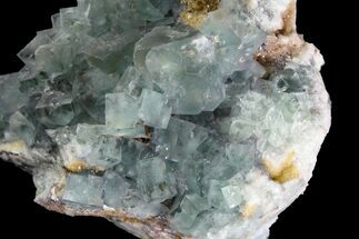 "3.3"" Sea-foam Green, Cubic Fluorite Crystal Cluster - Morocco For Sale, #138254"