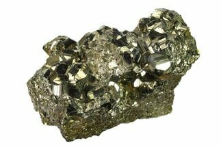 Pyrite - Fossils For Sale - #138135