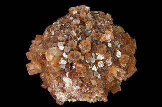 "Buy 2.25"" Aragonite Twinned Crystal Cluster - Morocco - #139240"