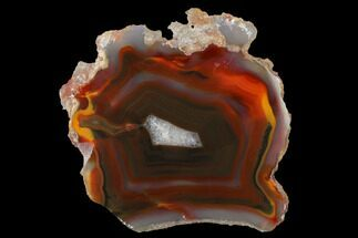 "Colorful, 3.5"" Polished Condor Agate Slab - Argentina  For Sale, #141386"