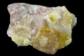 Fluorite & Quartz - Fossils For Sale - #141639