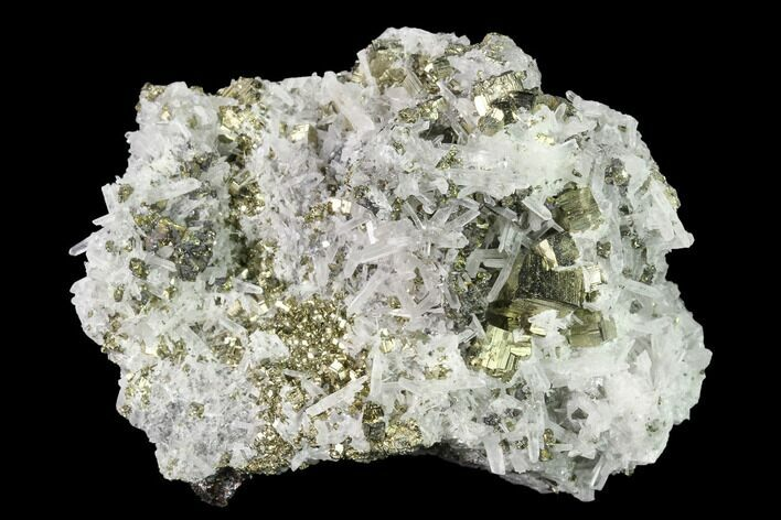 "3"" Quartz, Pyrite, Sphalerite and Chalcopyrite Association - Peru"