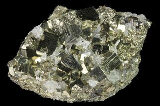 "3.4"" Quartz and Cubic Pyrite Association - Peru For Sale, #141845"