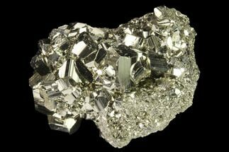 Pyrite - Fossils For Sale - #141825