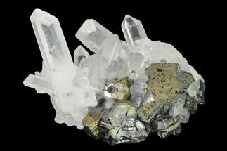 Pyrite, Sphalerite & Quartz - Fossils For Sale - #141831
