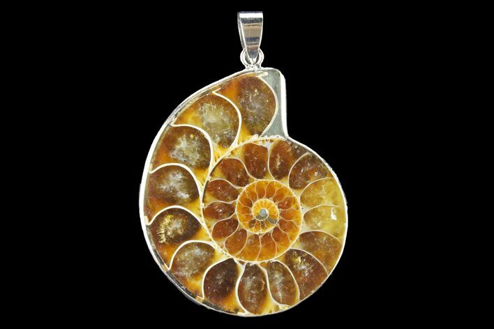 "1.65"" Fossil Ammonite Pendant - 110 Million Years Old"