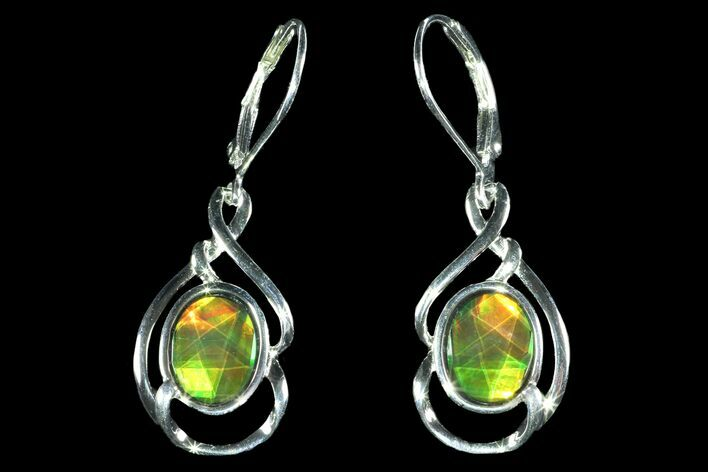 Gorgeous Ammolite Earrings with Sterling Silver