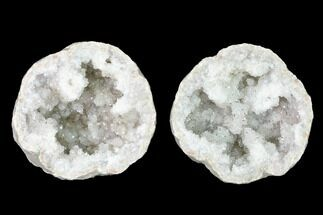 Quartz & Pyrite - Fossils For Sale - #144690