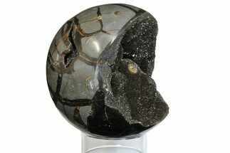 "5.1"" Polished Septarian Geode Sphere - Madagascar For Sale, #145262"
